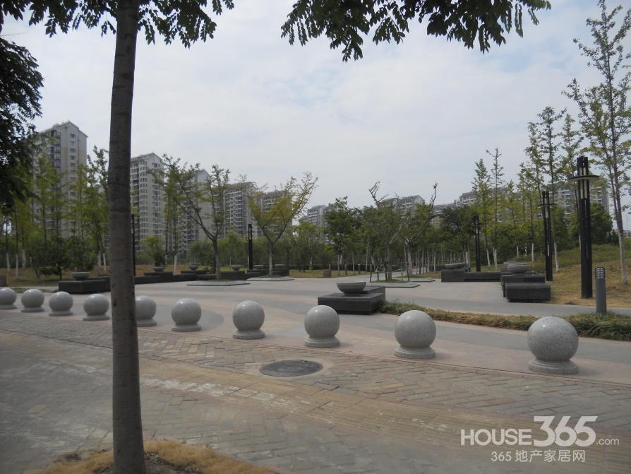 望湖城丹桂苑 户型好价格低于市场价10万望湖小学48中