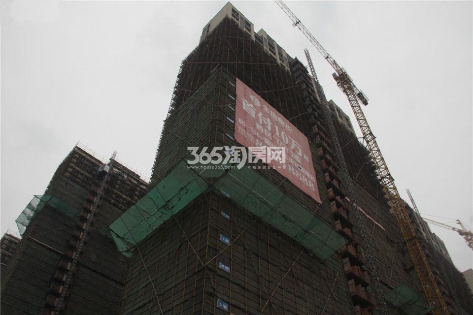 2014.11.27金地酩悦最新实景图
