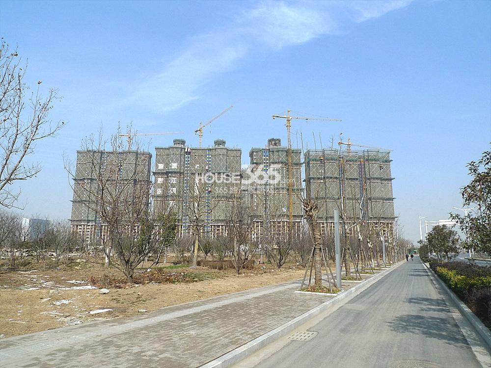 雅居乐滨江国际实景图(3.11)