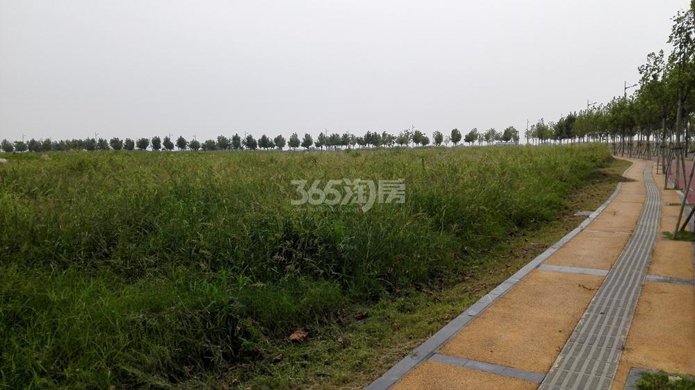 翠屏诚园周边游府西街小学分校现状(8.22)