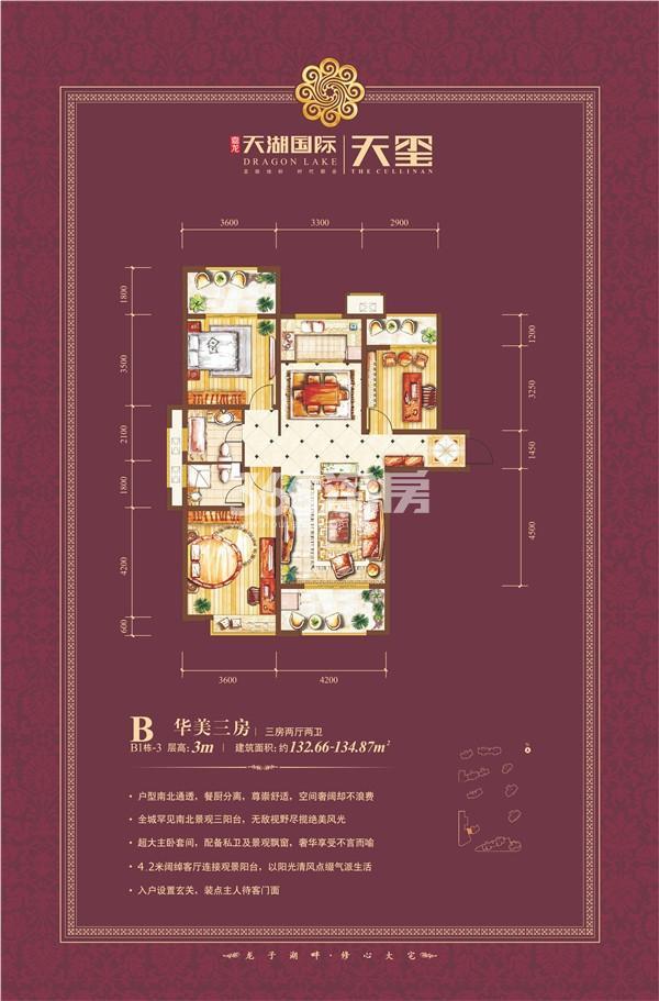 天湖国际户型图B1-3 三房两厅133㎡