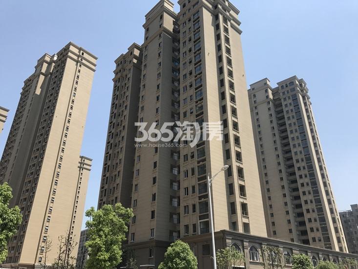 中电颐和府邸已建成楼栋(06.19)