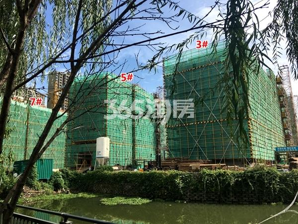 苏宁悦城四期3#、5#、7#楼洋房实景图(2017.9摄)