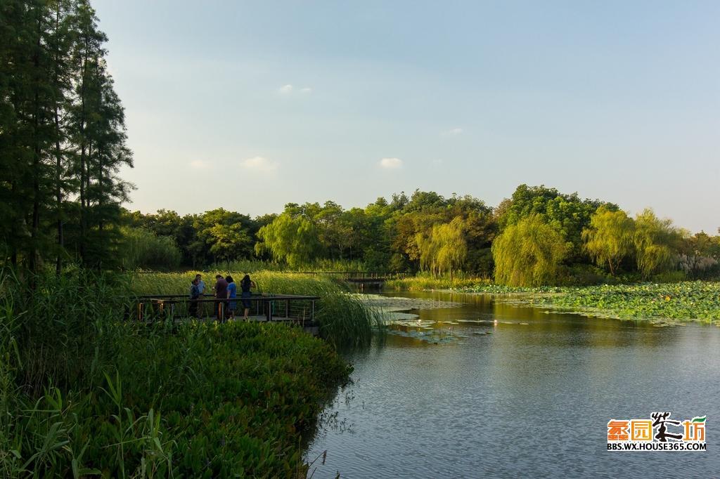 好景色要大家分享,来张公园里面的风景照吧.